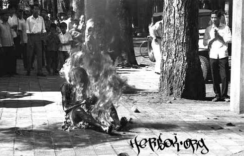 various burned In_flames_immolation2-146c0fe