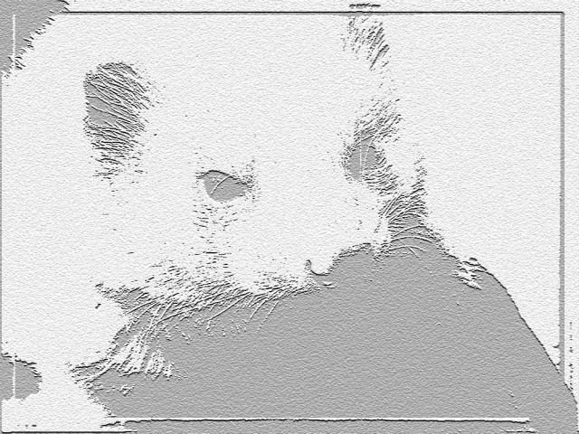 Spike Spikejuoui-1810284