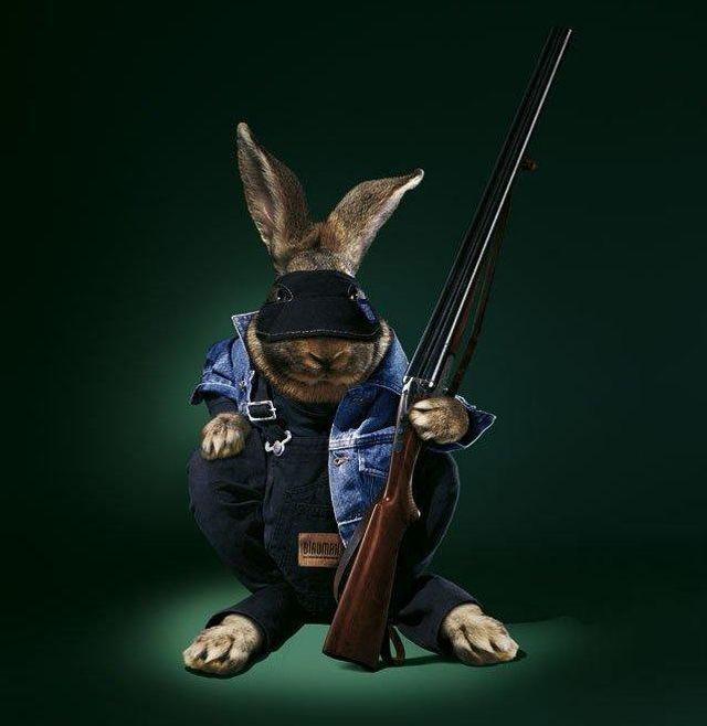 Image-lapin-déguisement-fusil-fanfan